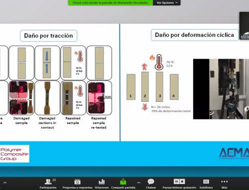 Editado el #WebinarAEMAC de Marianella Hernández, ICTP – CSIC